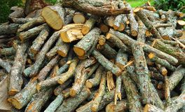 Fresh Cut Firewood. Firewood Kindling and Logs for the Heaters when weather turns cold Royalty Free Stock Photo