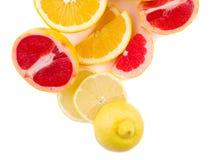 Fresh cut grapefruite lemon and orange on a white background royalty free stock images