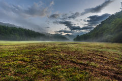 Fresh Cut Grass in Foggy Valley stock image