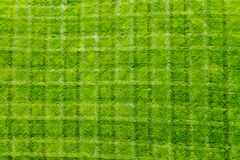 Fresh Cut Grass Pattern Background Texture. Fresh cut green grass background texture pattern Royalty Free Stock Images