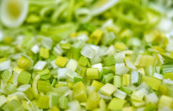 Fresh cut green onion Royalty Free Stock Image