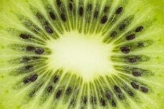 Fresh cut of a kiwi. Background, texture stock images