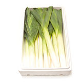 Fresh Cut Leeks in Box Stock Photo