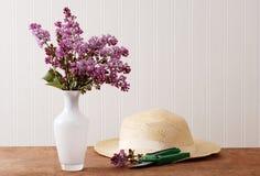 Fresh cut lilac flowers Royalty Free Stock Photos