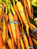 Fresh Cut Organic Carrots Royalty Free Stock Photography