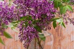 Fresh cut Purple Lilac Flowers in clear glass vase on wood. Syringa vulgaris. Fresh cut Purple Lilac Flowers in clear glass vase on wooden background. Syringa stock photo