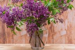 Fresh cut Purple Lilac Flowers in clear glass vase on wood. Syringa vulgaris. Fresh cut Purple Lilac Flowers in clear glass vase on wooden background. Syringa royalty free stock images