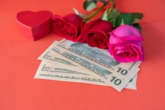 Fresh cut red roses with Nigerian Unided State Dollars notes for valentines royalty free stock photography
