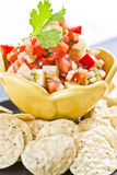 Fresh Cut Salsa Stock Image
