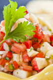 Fresh Cut Salsa Royalty Free Stock Images
