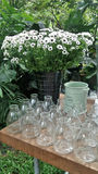 Fresh cut white flower in tin bucket and line of clear glass vases Royalty Free Stock Image