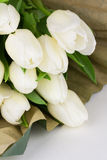 Fresh cut white tulips bunch. Fresh cut white tulip flowers with brown paper wrapping Royalty Free Stock Photo