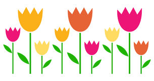 Colorful spring Tulips in row Stock Photography