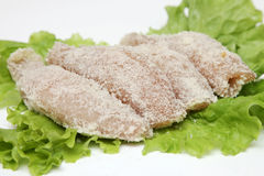 Fresh cutlet and salad. RUSSIAN fresh cutlet and salad Royalty Free Stock Images