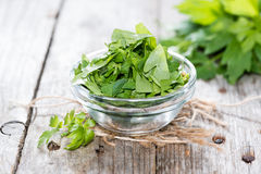 Fresh cutted Lovage Stock Image