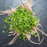 Fresh cutted Parsley. Some fresh cutted Parsley (detailes close-up shot Royalty Free Stock Photo