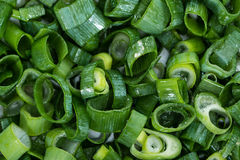 Fresh cutted Scallions Stock Photography