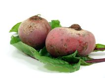 Fresh cutting Chioggia beets. Raw and fresh Chioggia beets Royalty Free Stock Images