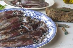 Fresh cuttlefish recently fishing royalty free stock photo
