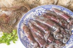 Fresh cuttlefish rustic background royalty free stock photos
