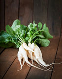 Fresh daikon radish. On a wooden background Stock Photography