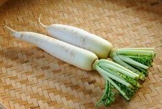 Fresh daikon radishes vegetable Stock Image