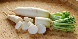 Fresh daikon radishes vegetable Royalty Free Stock Photo