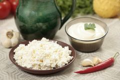 Fresh dairy products. Closeup with vegetables stock images