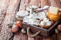 Fresh dairy products: cheese, butter, milk and eggs in wooden box Royalty Free Stock Images