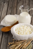 Fresh dairy products. Milk and cottage cheese with wheat on the rustic wooden background. Stock Photo