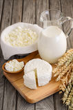 Fresh dairy products. Milk and cottage cheese with wheat on the rustic wooden background. royalty free stock photos