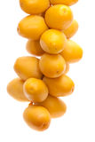 Fresh date fruit isolated on white Royalty Free Stock Images