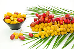 Fresh Date Fruits Stock Photos