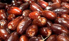 Fresh Dates. A close up on Fresh dates royalty free stock photography