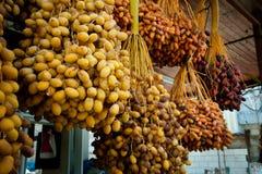 Fresh Dates at Jericho Market Stock Photos