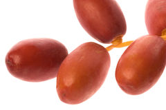 Fresh Dates Macro Isolated Royalty Free Stock Photography