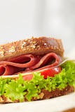 Fresh deli sandwich Royalty Free Stock Photo