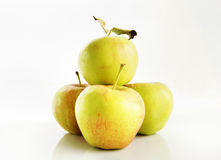 Fresh delicious apples Stock Image