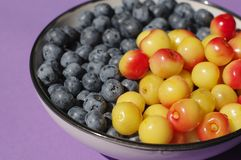Fresh delicious bluberries and cherries in bowl on purple background. Superfoods. Vegan Stock Photos