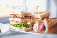 Fresh and delicious classic club sandwich on white dish Royalty Free Stock Images