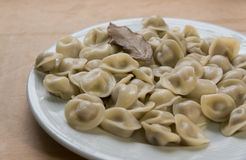 Fresh delicious dumplings oiled on the plate Stock Photography
