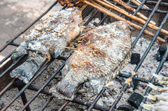 Fresh delicious grilled fish, tilapia Royalty Free Stock Images