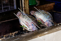 Fresh delicious grilled nile tilapia. Nile fish with salt. dark burn skin with charcoal outdoor for sale on street market in THAILAND Royalty Free Stock Photography