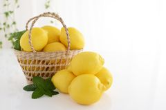 Fresh lemons. Fresh and delicious lemons in the basket Royalty Free Stock Images