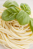 Fresh delicious pasta with basil  on white Stock Image