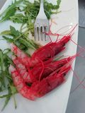Fresh Delicious Prawns on a plate stock photography