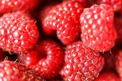 Fresh delicious raspberries background close up. Fresh delicious raspberries background closeup Stock Photos