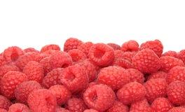 Fresh delicious raspberries Stock Image