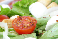 Fresh delicious salad. Fresh delicious diet salad close-up Stock Images