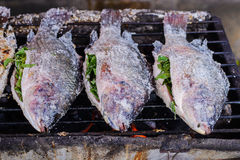 Fresh delicious Salt Crusted Grilled Fish Stock Photography